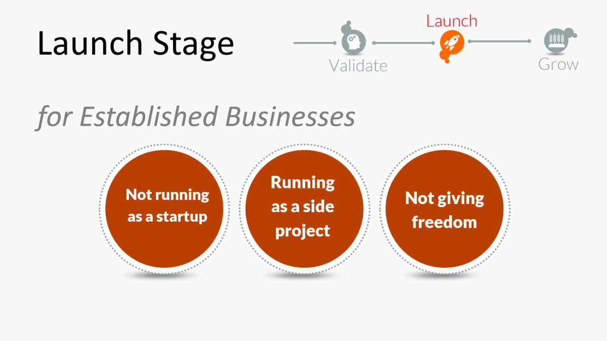 Mistakes in the Launch Stage for Established Businesses